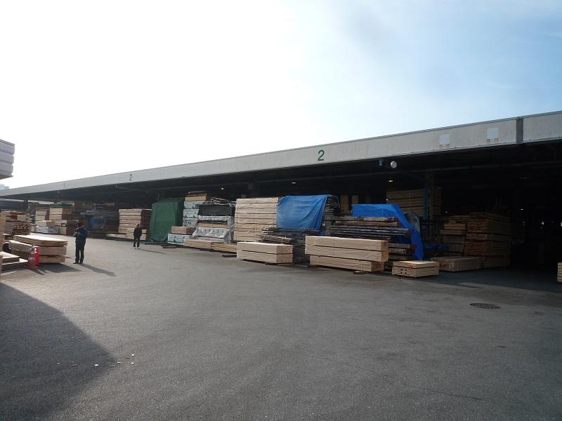 木材市場の視察