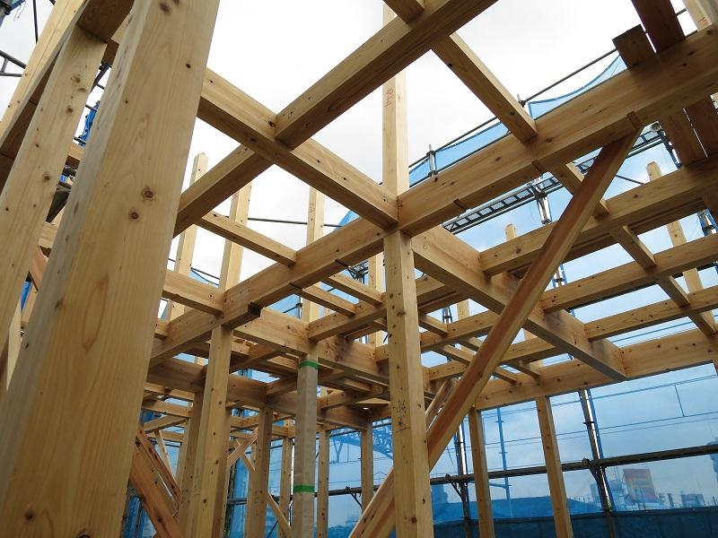 無垢の木の家構造見学会