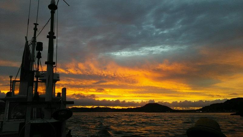 富浦港から出船